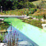 Construire une piscine naturelle biologique conseils et astuces bricolage d coration maison - Combien coute une piscine naturelle ...