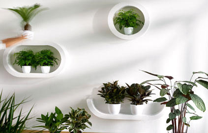 D co siporex aquarium - Faire un mur en beton cellulaire ...