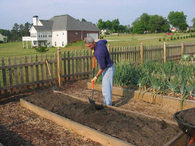 Préparer sol pour faire pousser tomates