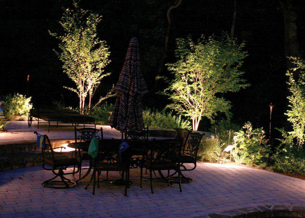 Eclairage arbres jardin