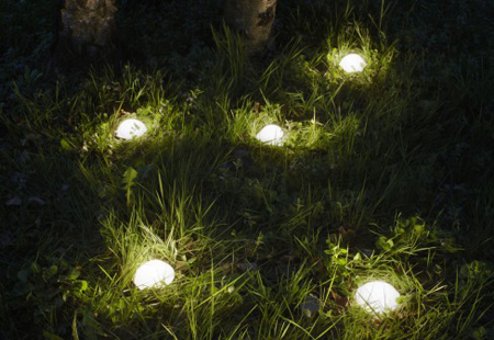 Eclairage pelouse