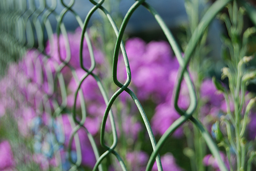Grillages jardin