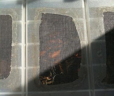 Grille-bac-compost-pas-cher