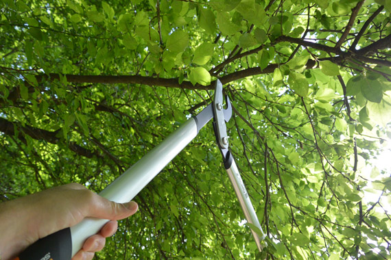 coupe-branches-Fiskars-Power-Gear-TM-LX-98