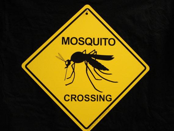 protection-moustiques