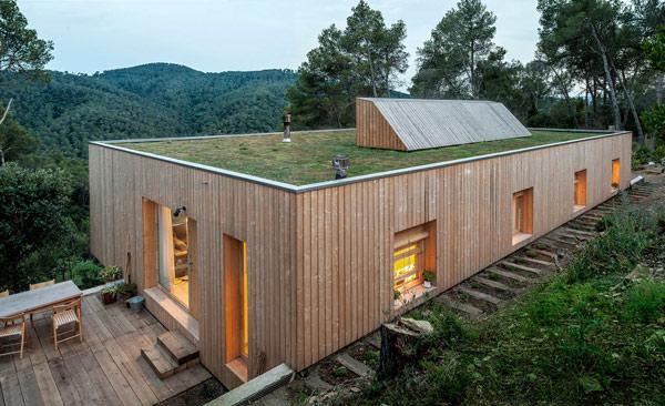 Maison-verte-toit-vegetalisé