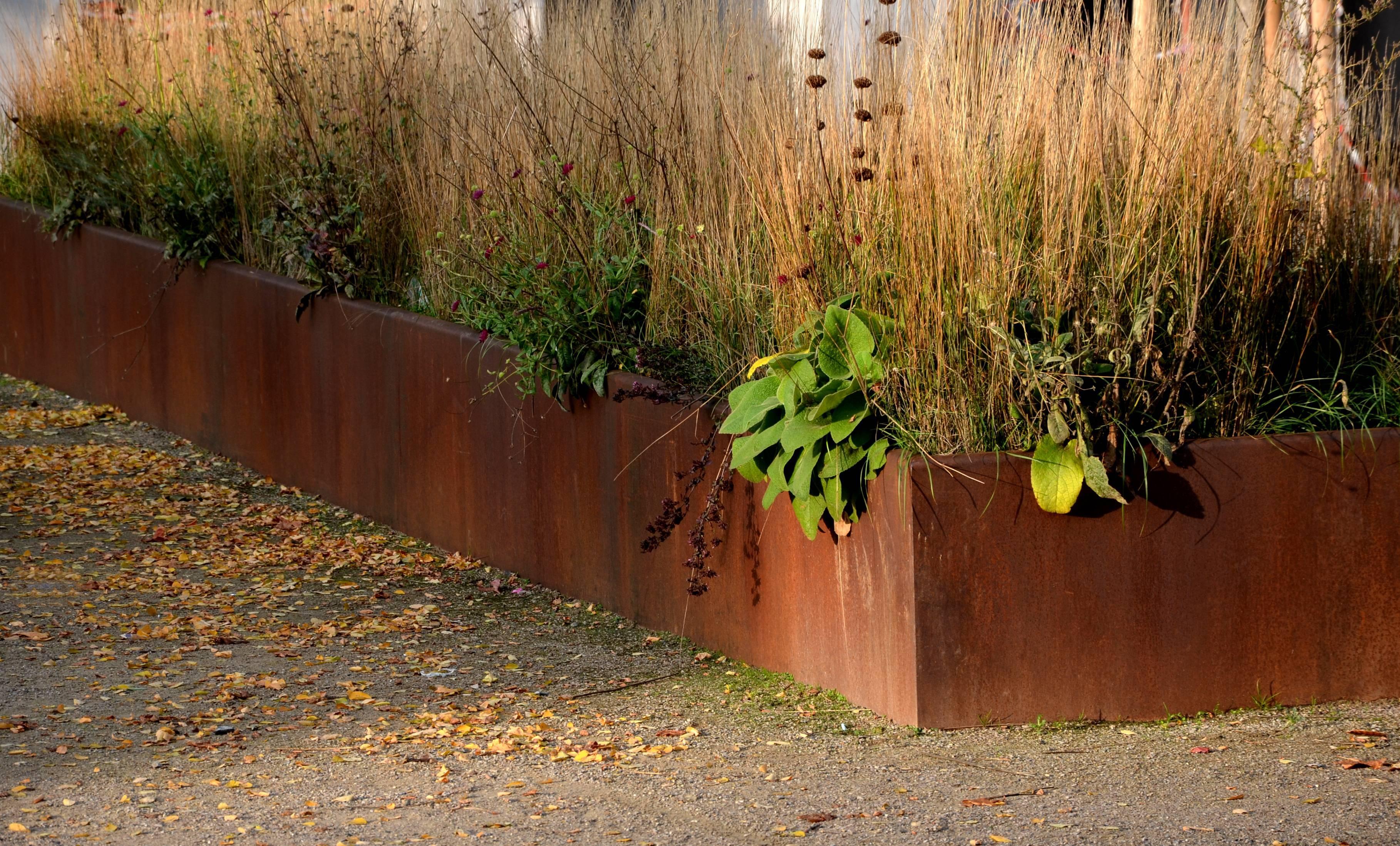 bordure jardin acier corten bois