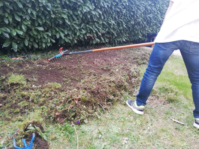 comment refaire sa pelouse