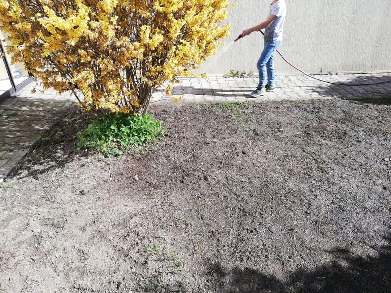 conseils pour faire pelouse